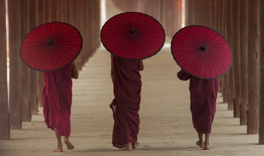 Camminare in meditazione: così nutriamo la nostra consapevolezza.