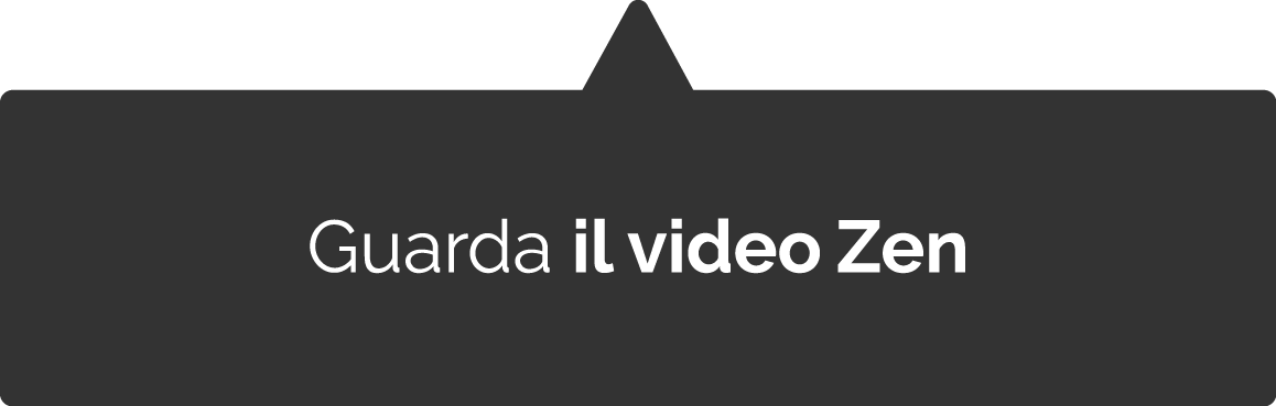 video corso zen